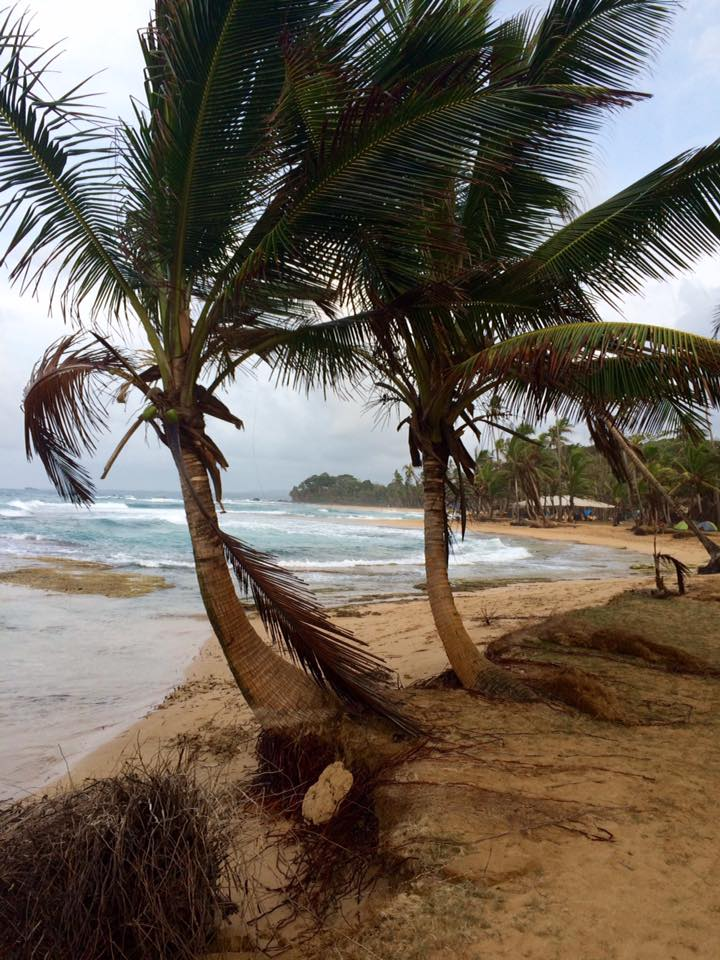 beach_dan gilbert