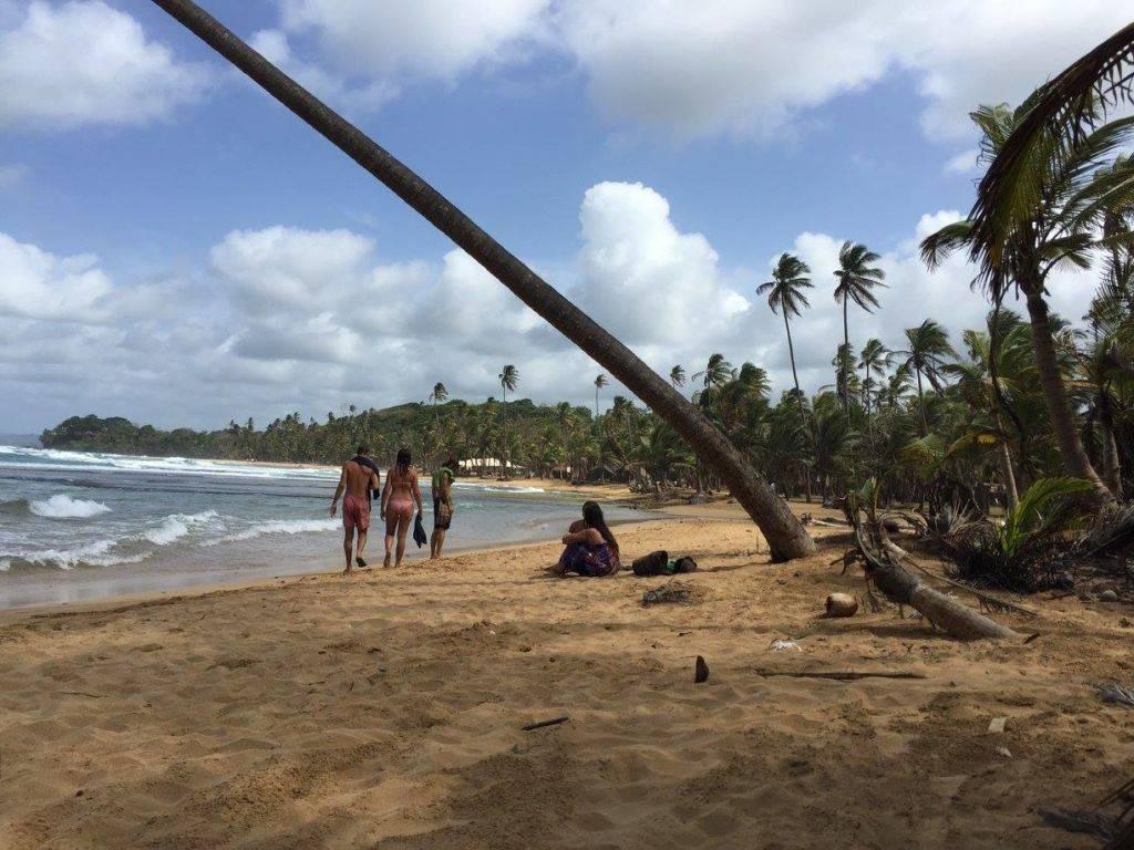 beach_daniel symons