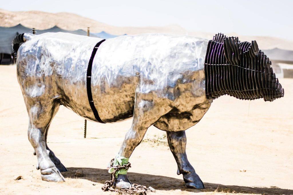Midburn 2016 silver bull