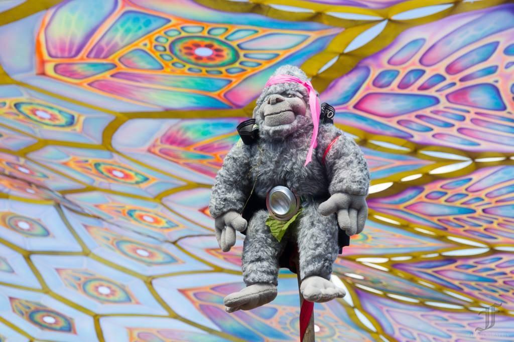 Eclipse festival 2016 monkey