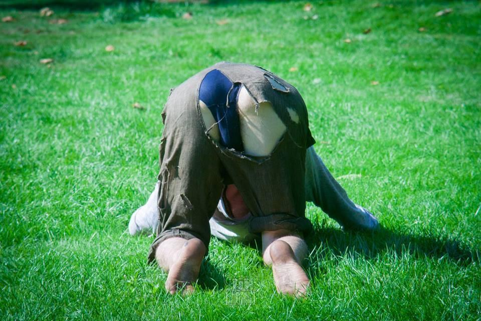 Hanse Hase upside down psy fi 2016