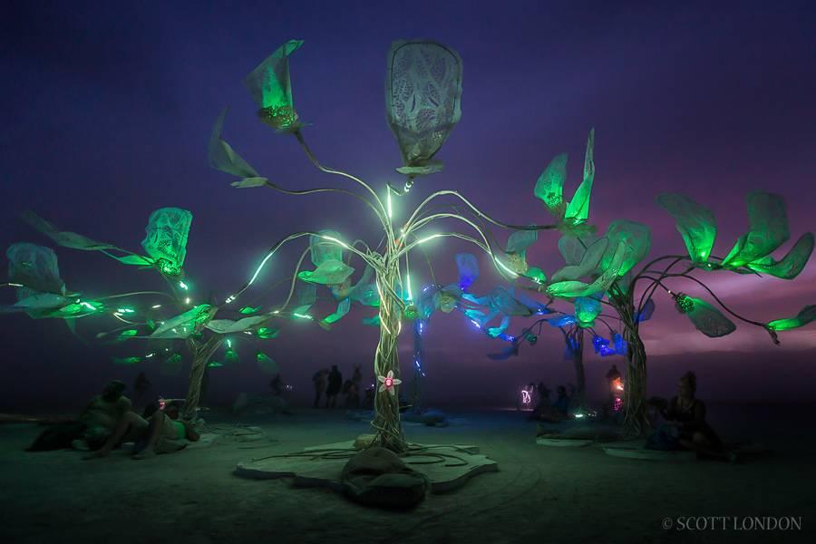 Burning Man 2016 art instalation