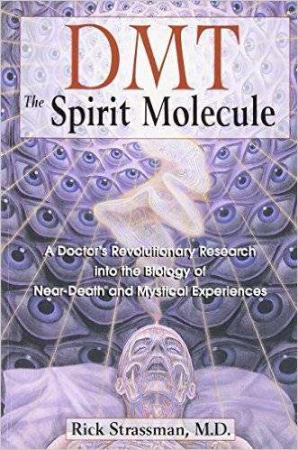 dmt-the-spirit-molecule-rick-strassman